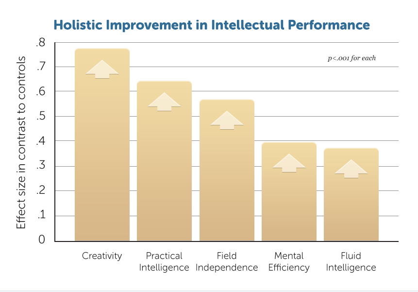 E6-Holistic-Improv-Intellectual-Perf